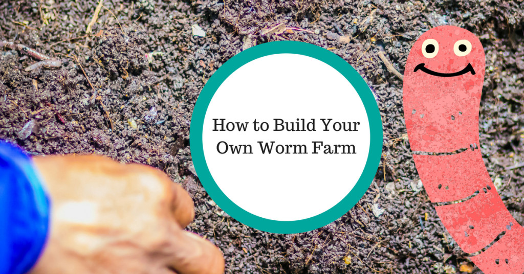How to build your own worm farm